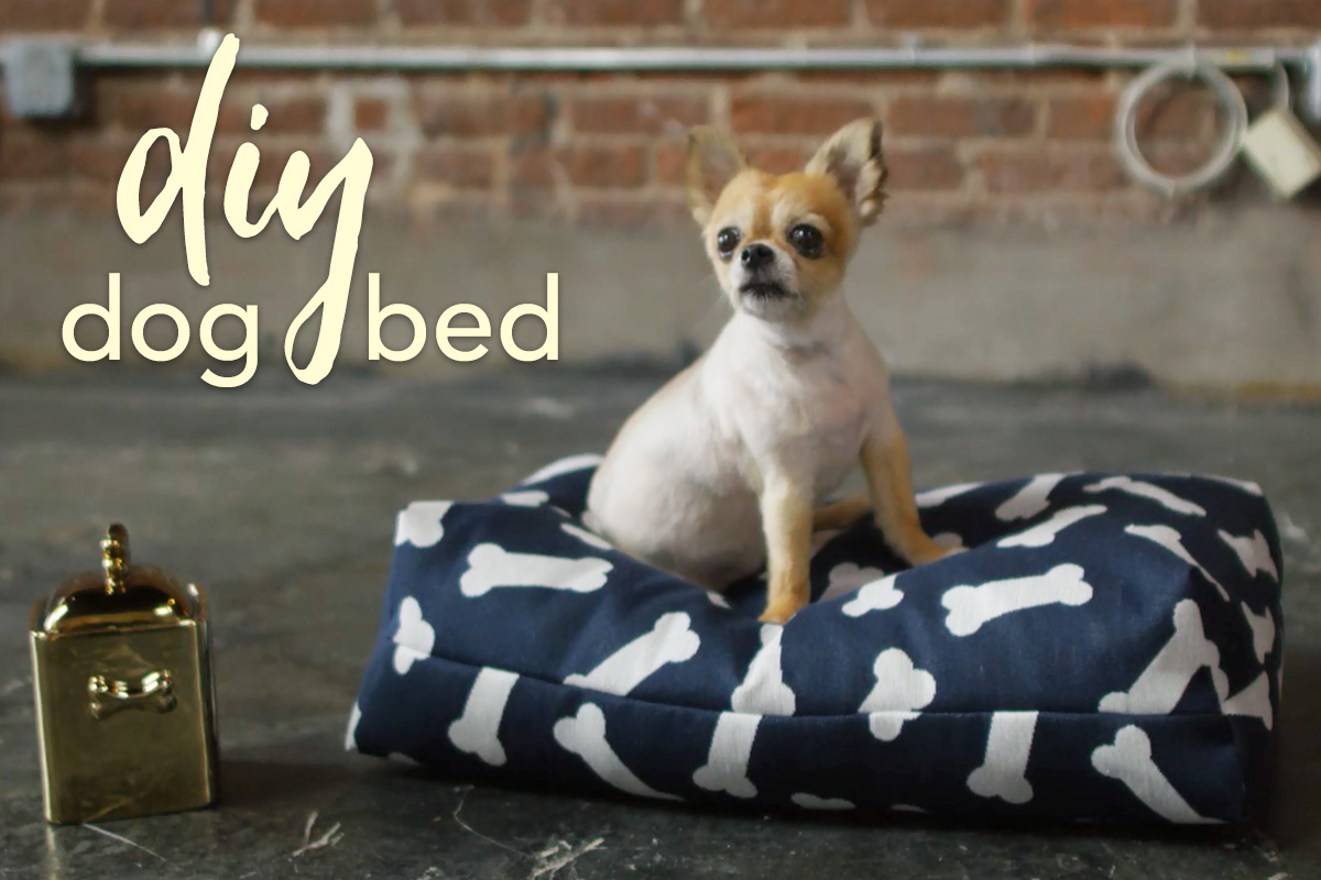 Diy Dog Bed Tutorial This Quick And Easy Gives You The